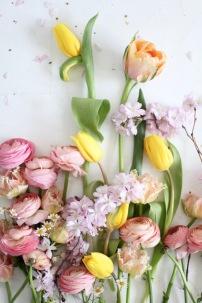 spring flowers via anastasiabenko.com