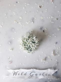wild garlic / stylist Anastasia Benko
