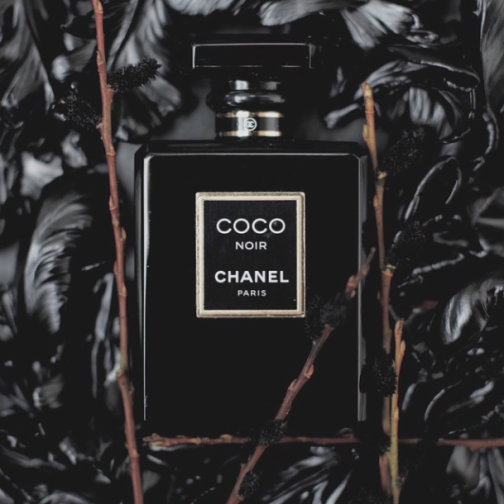 coco chanel and black tulips