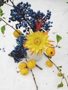 yellow dahlias