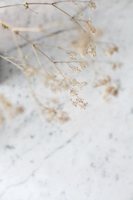 baby's breath and marble via anastasiabenko.com