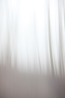 blurry winter forest