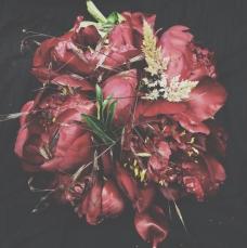 dark red peonies