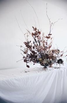 dried branches arrangement