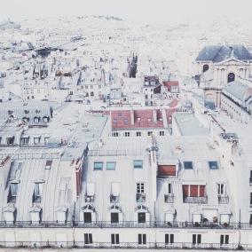 Paris rooftops via anastasiabenko.com