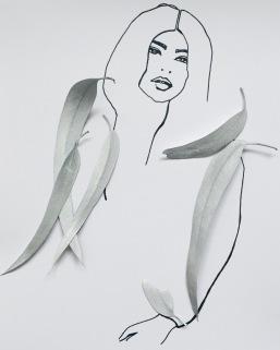 illustration with eucalyptus foliage