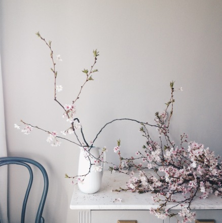 pink spring blossoms on marble counter