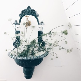 Queen Anne's Lace flowers in a vintage tub