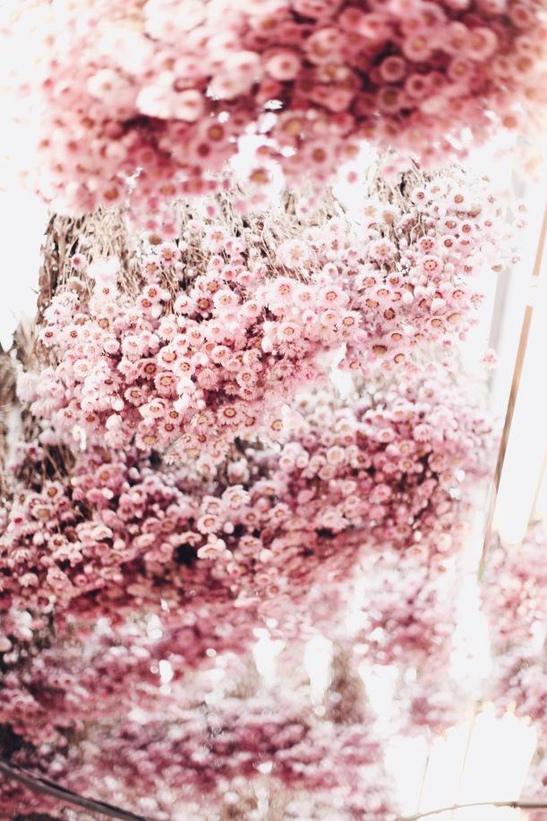 Amsterdam flower market via anastasiabenko.com