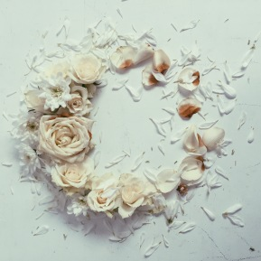 rose wreath via anastasiabenko.com