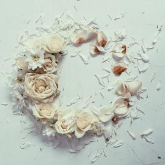 rose wreath via anastasiabenko.com