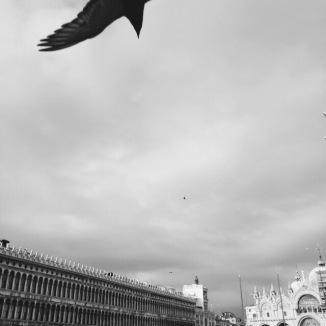 Piazza San Marco, Venice, Italy