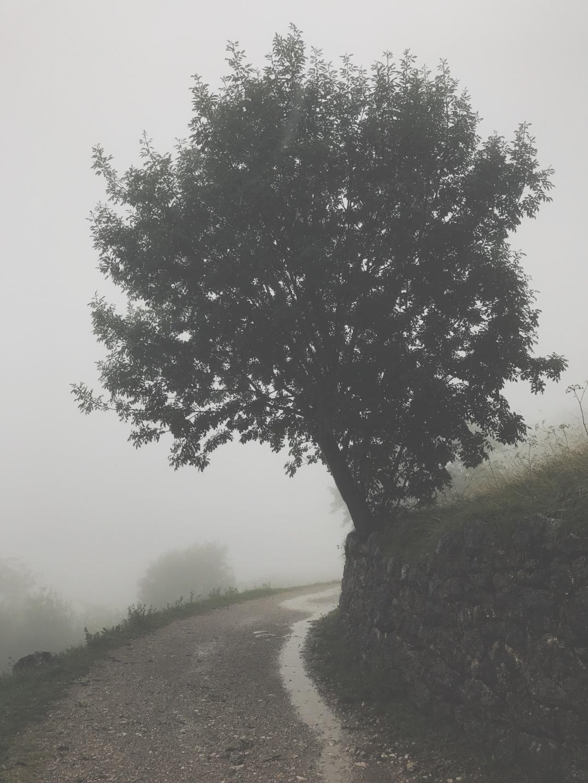 foggy mountain road, Italy