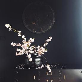 moody flower arrangement black wall via anastasiabenko.com