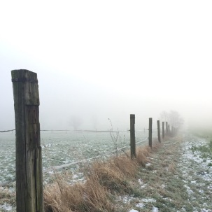 foggy landscape, Germany via anastasiabenko.com