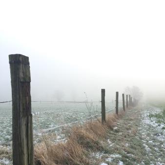 foggy landscape, Germany via anastasiabenko.com