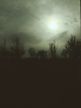 Moody landscape with November sun