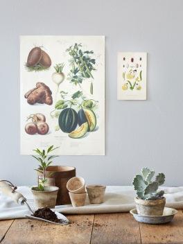 rustic garden table - potting plants