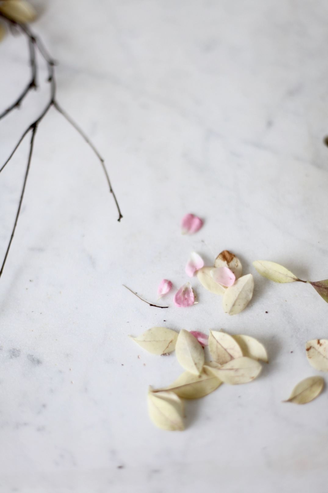 rose wreath via Anastasia Benko