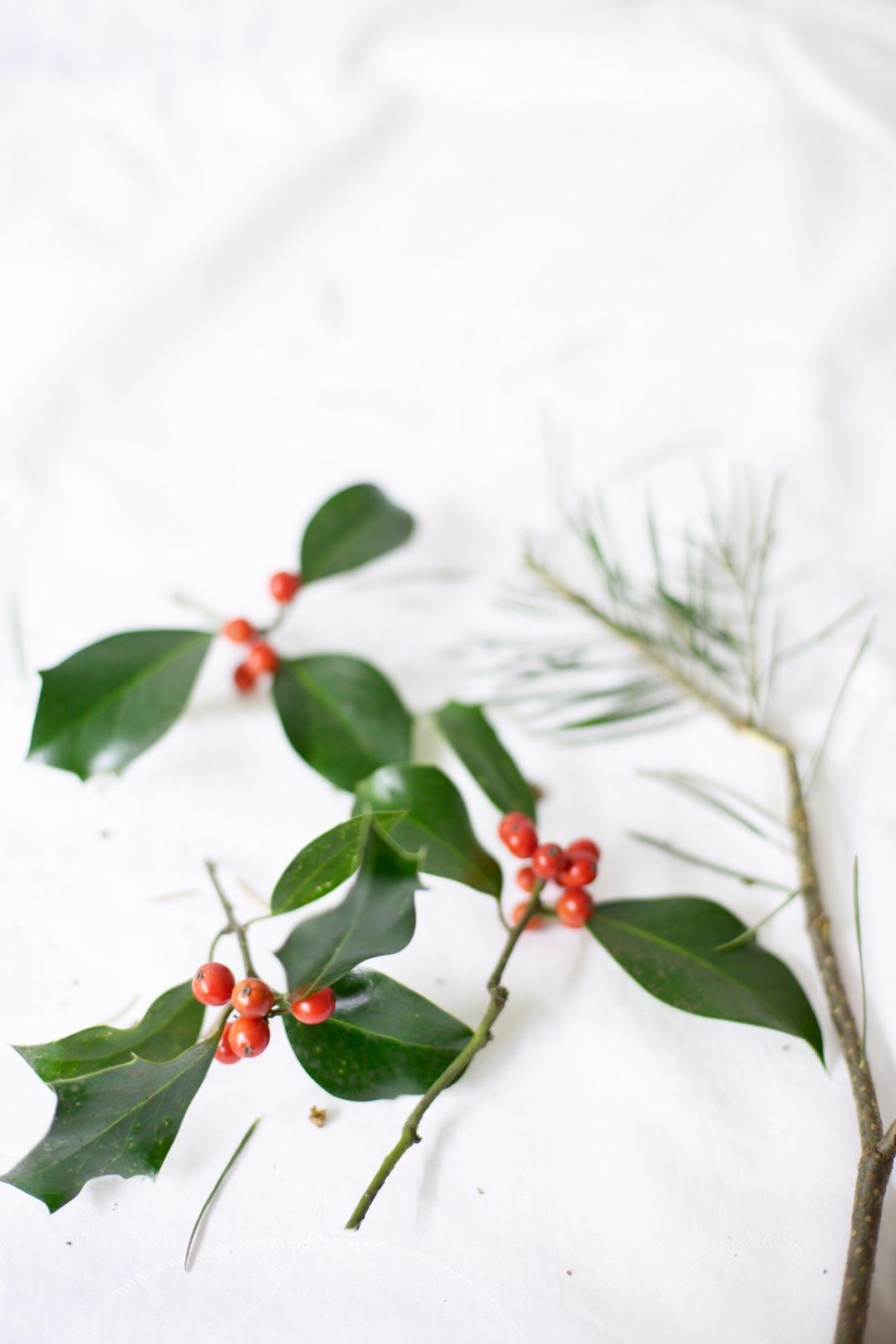 red winter berries via Anastasia Benko