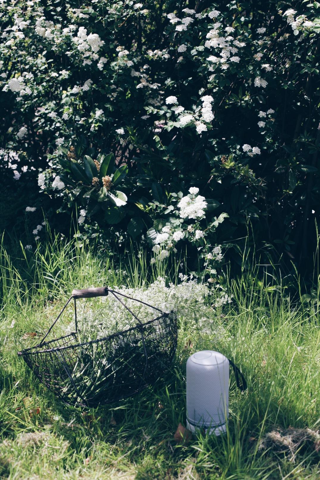 Libratone speaker in the garden via anastasiabenko.com