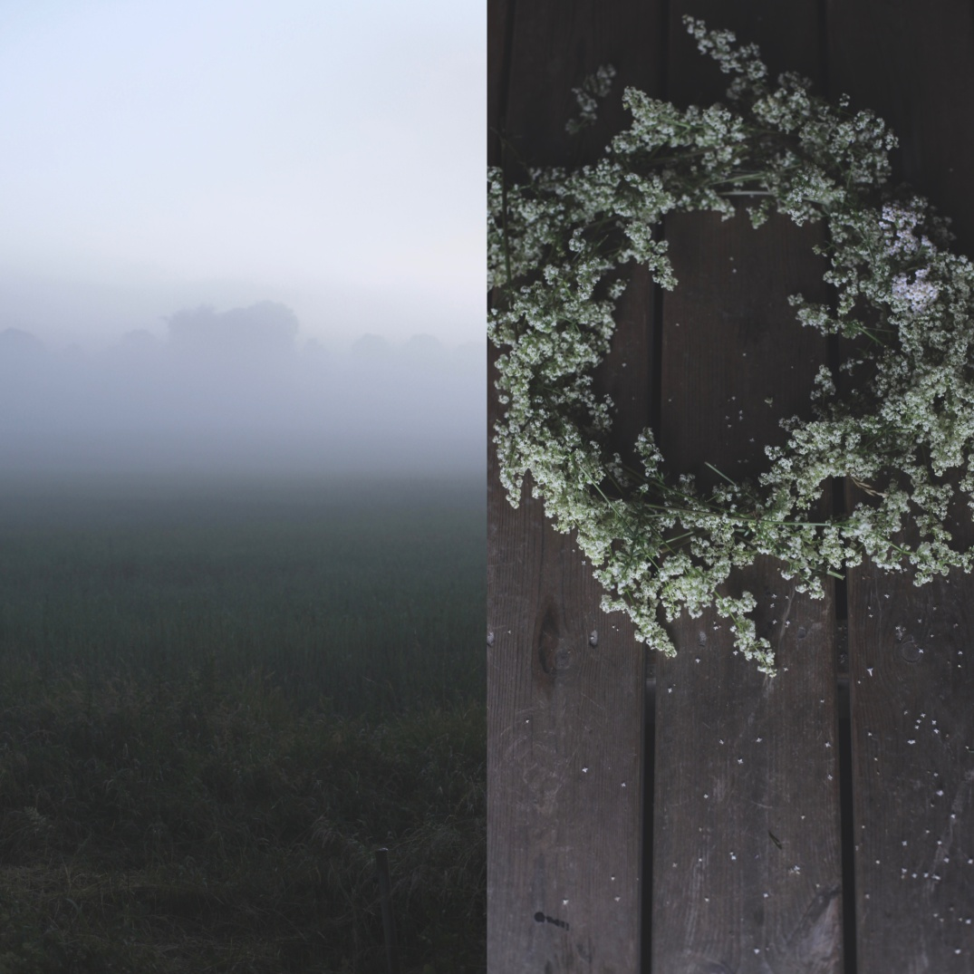 fog over wild meadow, wild floral wreath
