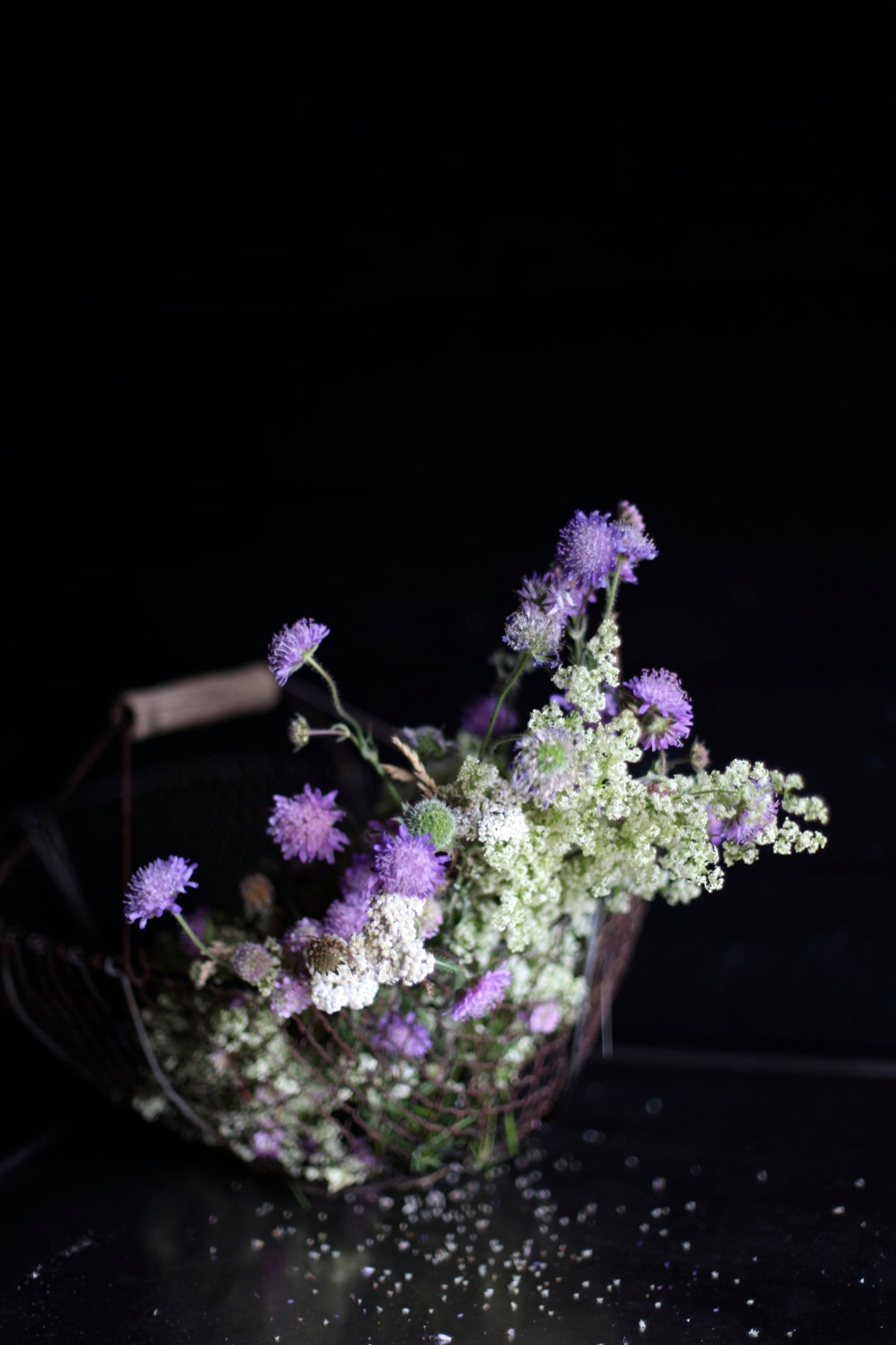 vintage wire basket with wild flowers, foraged in Denmark