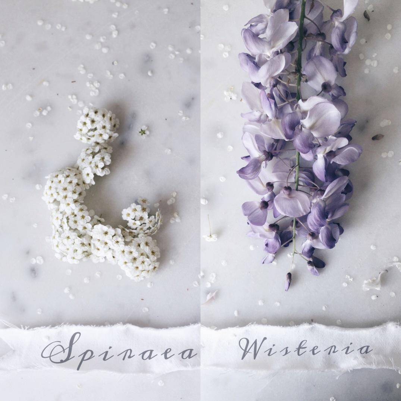 spring flowers spiraea and wisteria / stylist Anastasia Benko