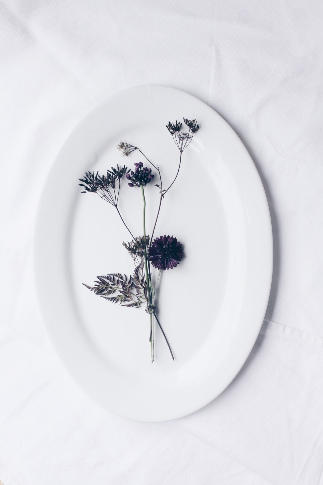 floral Installation with cornflower, allium, wild carrot