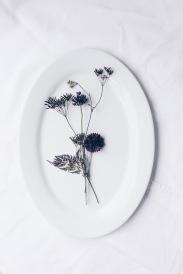 floral Installation with cornflower, allium, wild carrot