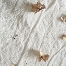 dried hydrangea on antique linen cloth