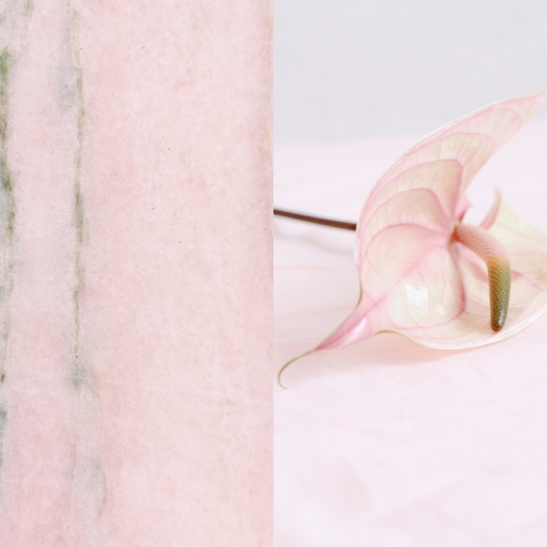blush anthurium and pink marble