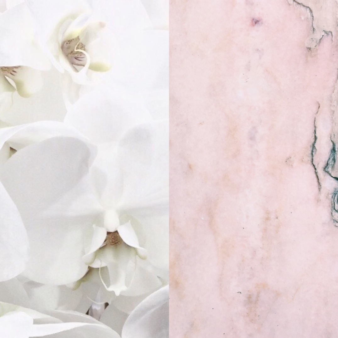white phalaenopsis and pink marble