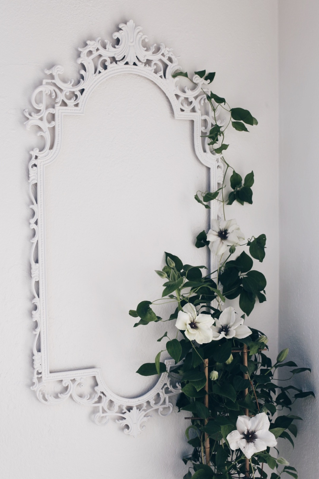 DIY trellis for my clematis - painted with All White from Farrow & Ball