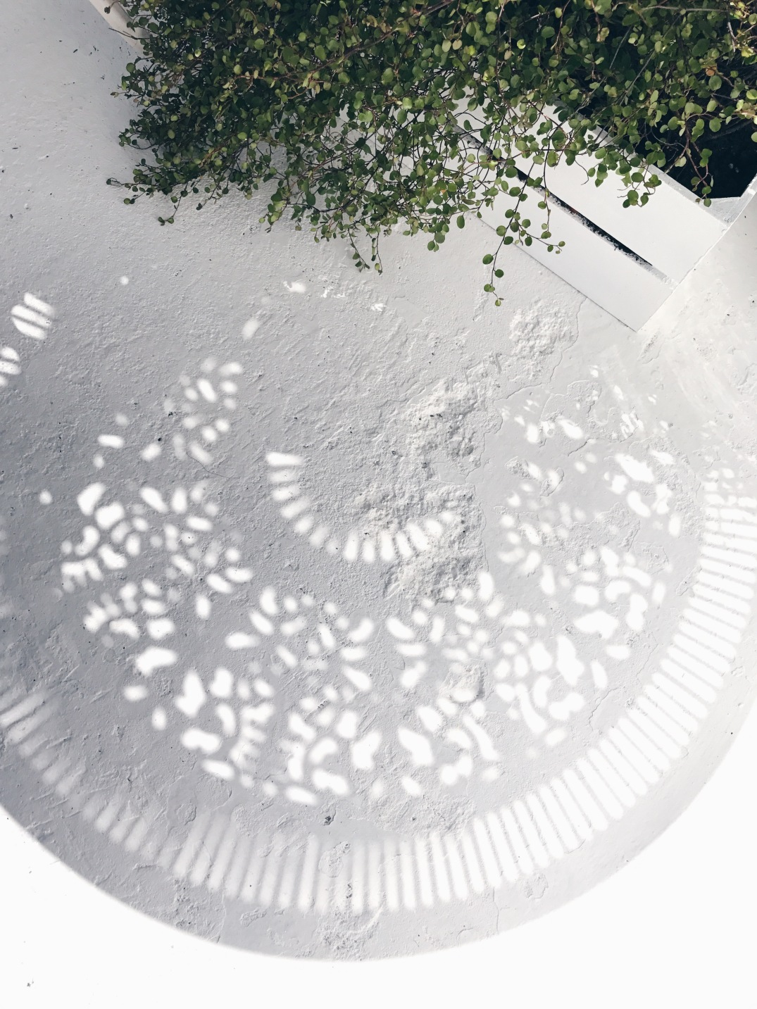 shadow play from my new vintage outdoor furniture on a floor also painted with 'All White' from Farrow and Ball