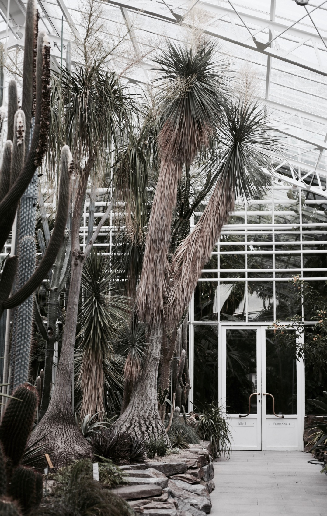 detail at botanical garden in Munich, Germany