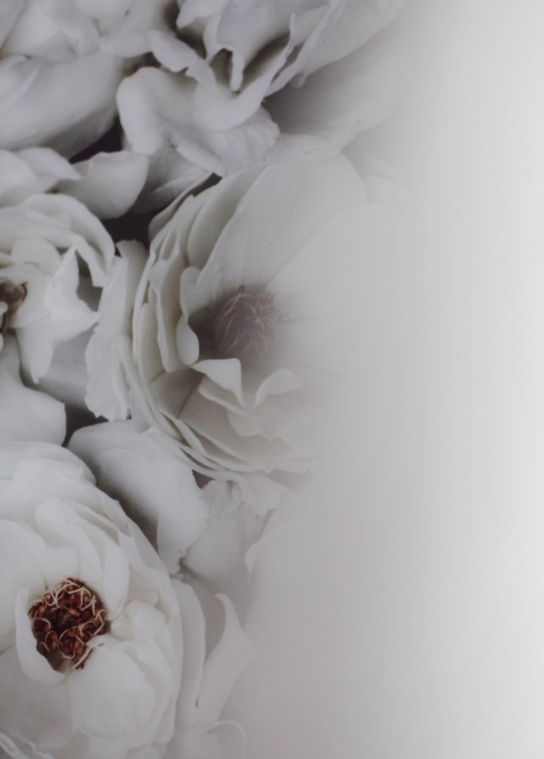 Anastasia Benko moody white roses print