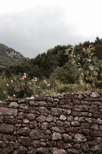 brick wall and flowers in Borgo di Canale, Italy