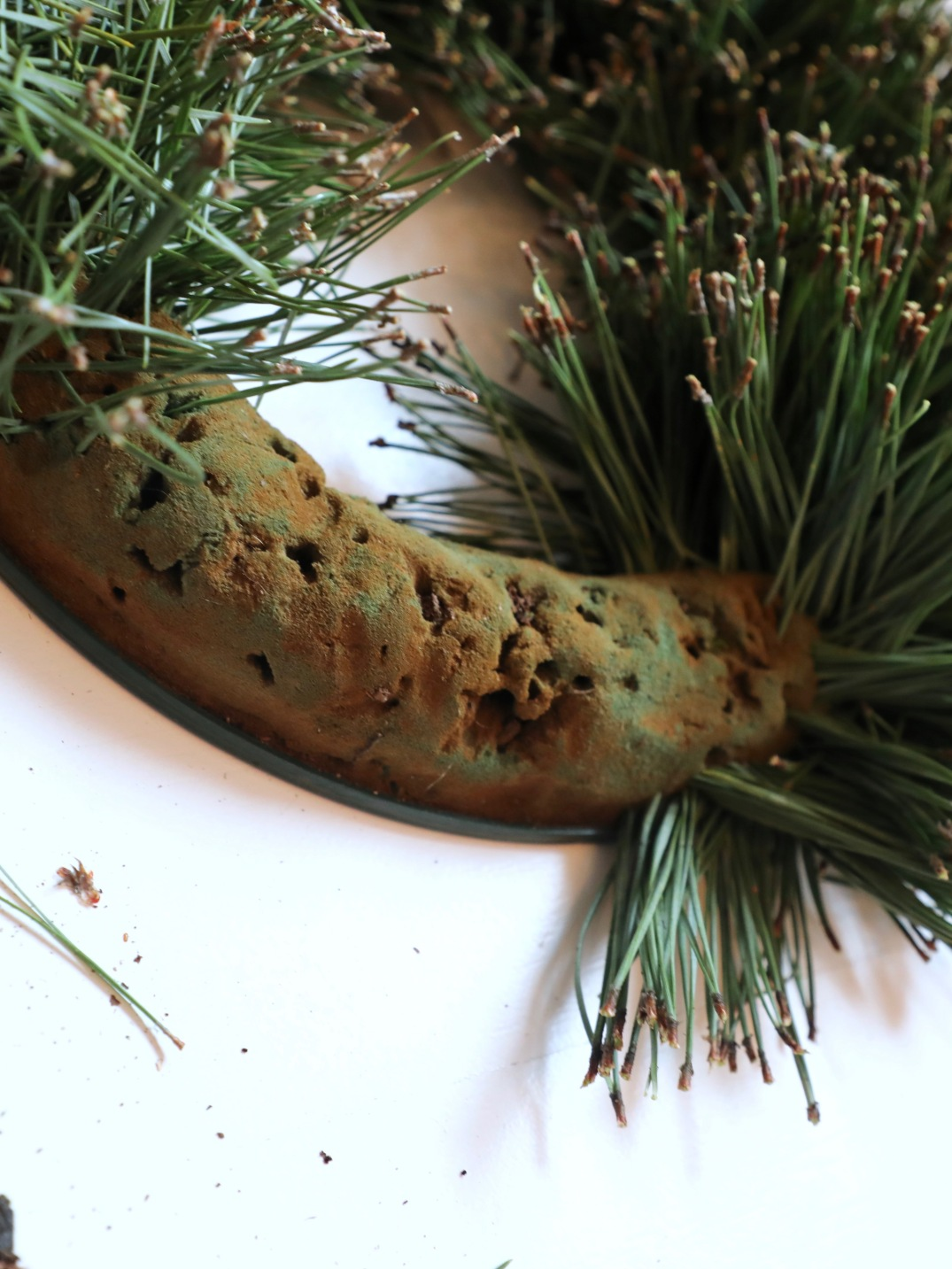 Making of DIY Christmas pine wreath