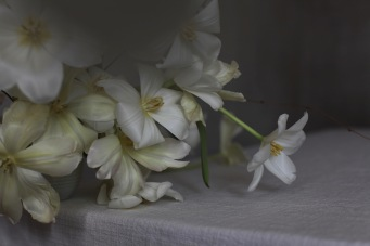 white tulips with rough linen table cloth