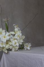 Centerpiece with tulips - Spring floral arrangement